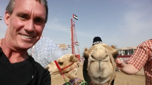 Camel with Fez